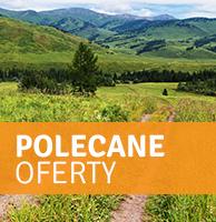 Polecane oferty